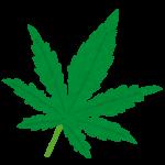 カナダでマリファナが合法になるってよ